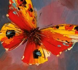 coach2change vlinder
